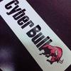 """今日も動画のお勉強。 LINE×Facebook×CyberBull3社セミナー スマホ時代の""""ブランディング動画広告""""の考え方"""
