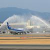 ANAジャンボ退役記念フライト... 747が伊丹空港に飛来