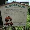 武蔵小金井 野川と湧水めぐり6(黄金の水~武蔵小金井駅)
