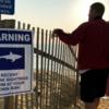 人がサメに襲われる数が昨年、突然減少