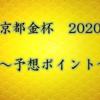 【京都金杯 2020】予想ポイント
