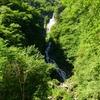 自然を巡る(精進ヶ滝)