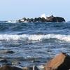 波 越前海岸
