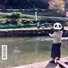 渓流茶園 遊んで、食べて、満足できるオススメの釣り堀