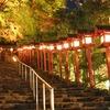 貴船神社でしか買えない、一澤信三郎帆布の「ご朱印帖かばん」。