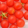 小さいトマト