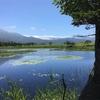 夏休みに子連れで国内旅行を楽しむ④:北海道・知床編⑴