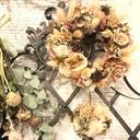 花のたねひとつ