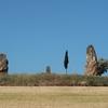 スペイン巡礼:【Day 5】Uterga → Cirauqui (14.6km)