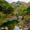 表匹見峡の紅葉を撮る