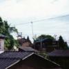 栃洞スナップ(7)~前平~