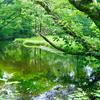 乙和池(新潟県佐渡)
