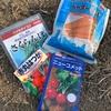 きゅうり畑まわりソルゴー播種