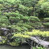 2017年7月 週末京都旅行