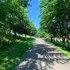 【函館市】道南四季の杜公園|家族連れのレクにおすすめ!自然を楽しむ道立公園