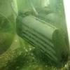 GEXの熱帯魚用ヒーターから音がする!故障なのか・・・?メーカーに問い合わせてみた