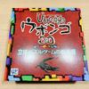 【ウボンゴ3D 日本語版】遂に届いた超絶難しい立体パズルゲーム。アタシも『ウボンゴッ!』って叫びたかった、でも届かなかった夏の終わり。