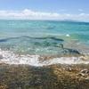 【竹富島】全身で沖縄を感じられる島、竹富。