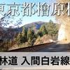 【動画】東京都檜原村 林道 入間白岩線