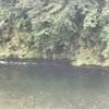 #2018-10【山梨県丹波川】3時間で強制終了ー丹波川の洗礼、、、からの のめこい湯へ!