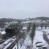 大雪で大はしゃぎ