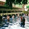 インドネシア旅行記【バリ編】 Ubud 1 day trip ティルタ・ウンプル寺院ー Pura Tirtha Empul 【前編】 いよいよ沐浴で有名な寺院へGO!