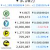 仮想通貨をコツコツ積み立てて億を目指す(2/6) NANJコイン完成!