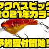 【シマノ】より深いレンジを攻略出来るクランクベイト「マクベスビッグ2021年カラー」通販予約受付開始!
