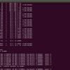 yolov3を自前データで学習(成功編)