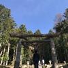 古代の日本の息吹