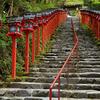 新緑に誘われ貴船神社本宮と奥宮を訪ねてみた
