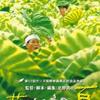 【誰かこのおっさんに優しくしたってくれ】映画 菊次郎の夏 【ネタバレ感想】