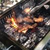 【鏡川源流憩いの場】田舎の山奥でお肉と自然を味わおう!