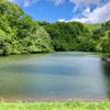 洗馬丁溜池(山形県村山)