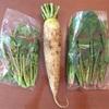 【たべもののこと】生活クラブの無農薬野菜『やさいBOX』のミニセット 2017年2月(5週〜8週)に届いたお野菜たち。(野菜ボックス)