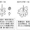ヤツデとカミヤツデの花