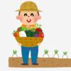 家庭菜園をプランターで!5種の夏野菜をベランダで簡単栽培!