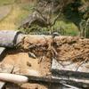 塀修理1(古い土塀の簡易補修02)