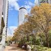 潜在意識の声を聞く・大阪キネシオロジーセミナーを開催