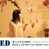 BED -眠り人のための演奏会-    Concert for Sleeper