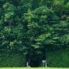 毎日一枚。「なんかいい感じ。」おすすめ:☆☆☆☆ ~写真で届ける伊勢志摩観光~
