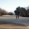ランドスケープデザイン探訪「新宿御苑」