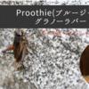 コオロギとはちみつが出会った「Proothie(プルージー) グラノーラバー」【日本初上陸】