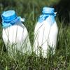鼻づまり、花粉症、鼻炎の原因は牛乳!?