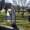 【青い水の絶景】日本名水百選のひとつ、透明度バツグンの鹿児島県『丸池湧水』