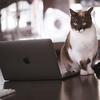 Macが重い原因がQuickLookとkernel_taskだった