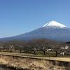 今年は富士山に登る!