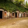 大久野島の中部砲台跡