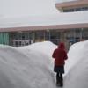 【豪雪注意】十日町『ラーメン・クマ』出没注意