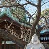 【東海七福神巡り】石像シリーズ